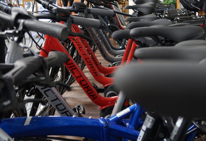 E-Bike – Was muss ich beim Kauf beachten?